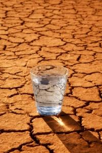 thirsty-desert